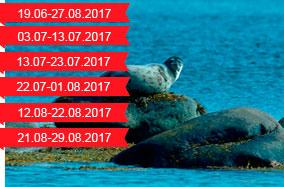 284-famaly-leto-beloe-2017.jpg